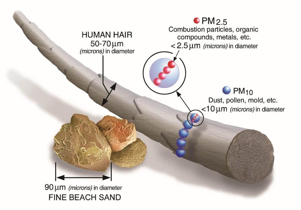 Taille des différentes particules fines PM 2,5